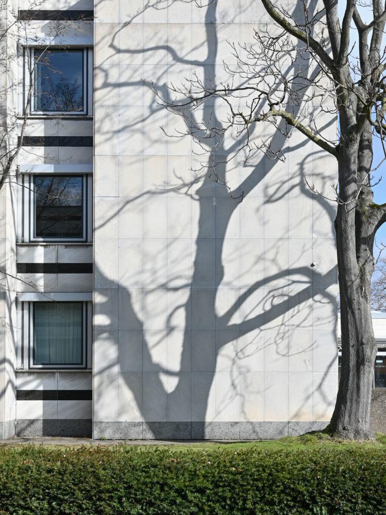 Tulpenfeld Haus 8